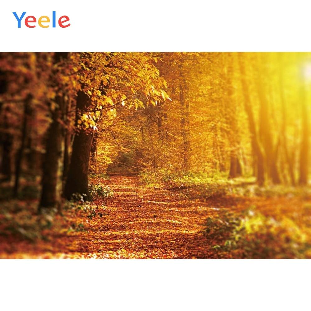 Виниловый фон для студийной фотосъемки Yeele с изображением осеннего леса дерева природы в путешествиях портретов малышей на заказ