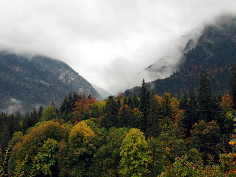 Пейзаж в Линдерхоф