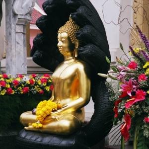 Будда в королевском дворце